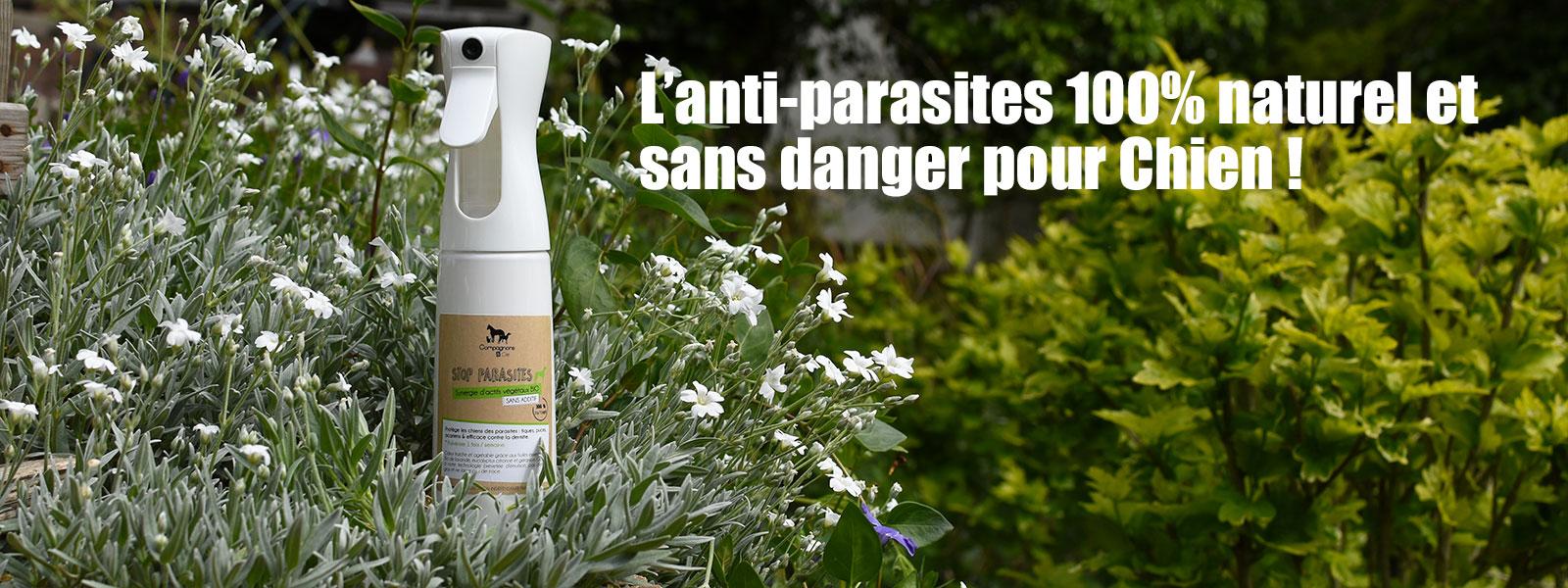 brumisateur antiparasites naturel et sans danger pour chien